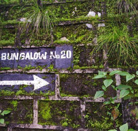 lansdowne bungalow mysterious